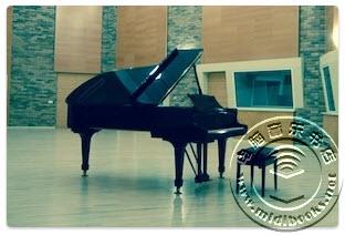 ThaLoops Steinway Grand Piano 02