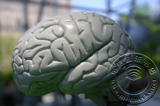 瑞典科学家成功培育大脑细胞