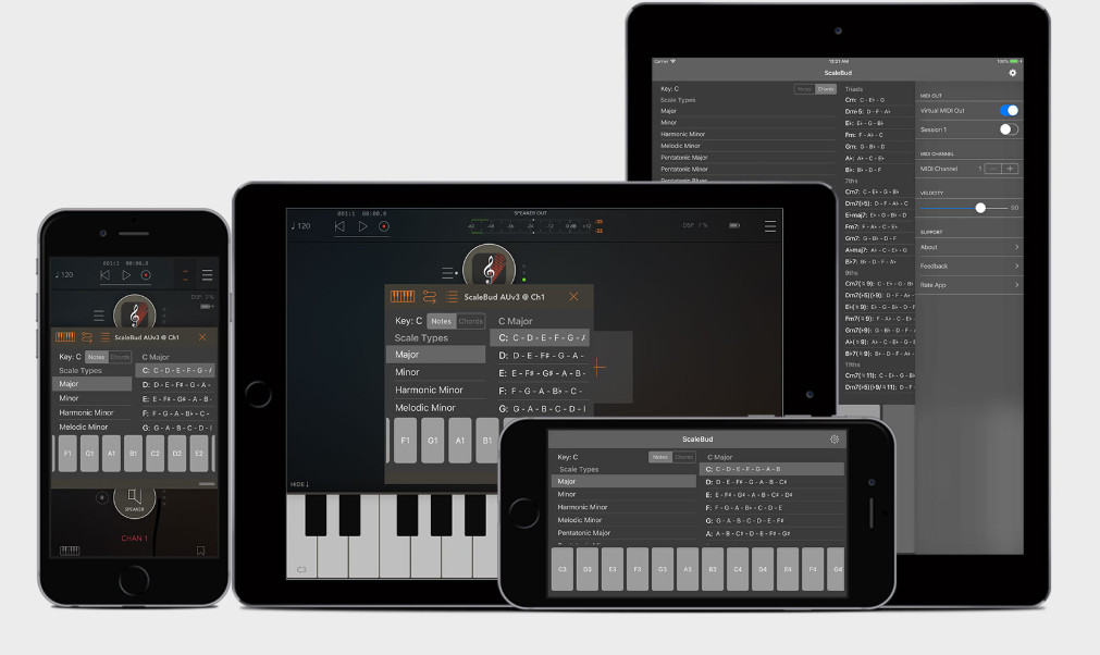 Scalebud — iOS系统下的乐理学习工具