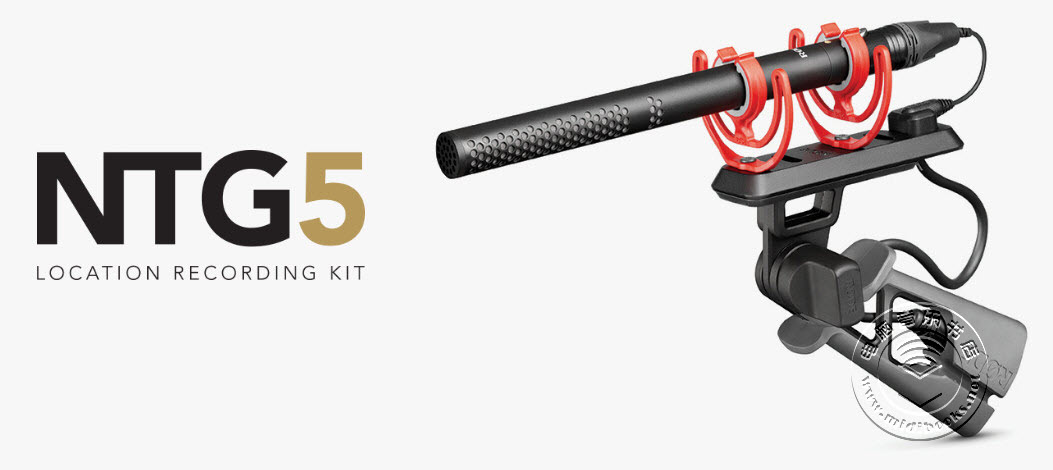 Rode 发布 NTG5 短款超轻型枪式麦克风