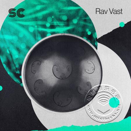 【精品】Rav Vast 乐器(类似手碟)音色库下载(WAV和KONTAKT格式)