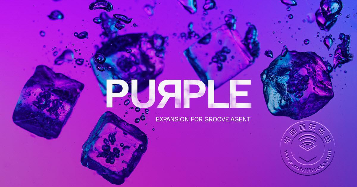 Steinberg(斯坦伯格)为扩展Groove Agent发布Purple采样库
